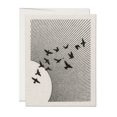 Flock All Occassion Card