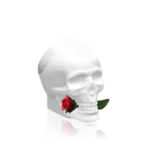Ed Hardy Skull and Roses