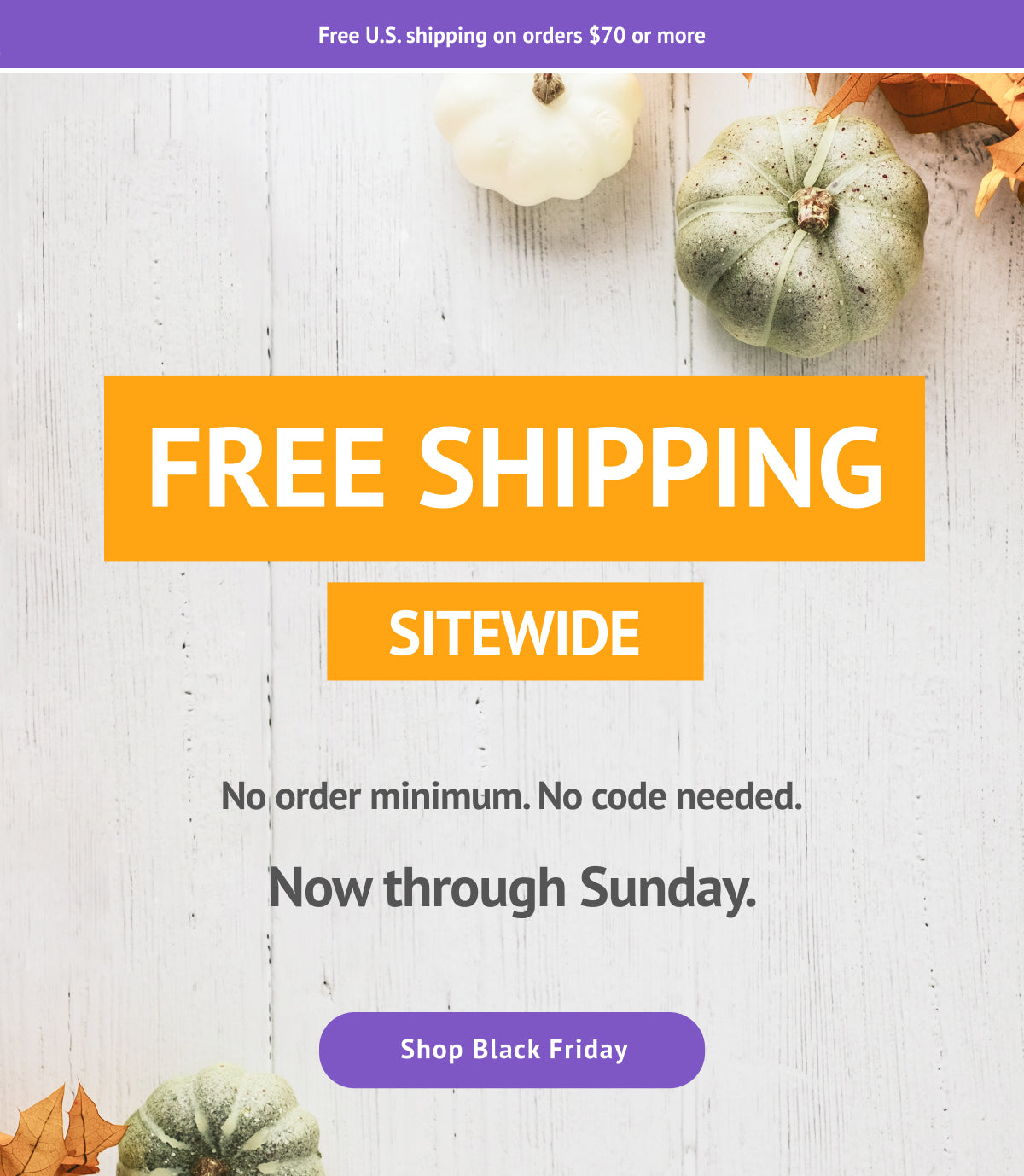 Email banner announcing that there's free shipping for Black Friday