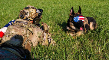 Rex Specs Teams up for Care Packages to Military K-9 Teams