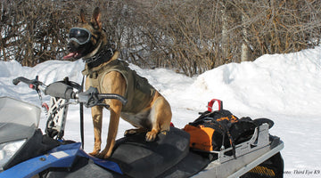 REX SPECS K9 FEATURED IN SOLDIER SYSTEMS