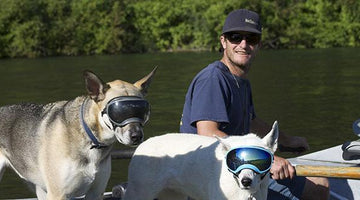 JACKSON HOLE NEWS AND GUIDE: JACKSON COUPLE'S REX SPECS MAKES CANINE GOGGLES THAT FIT