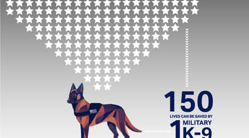 Remembering Our K-9 Heros Through the Years