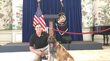 Protecting the President: The Critical Role of Military K-9's