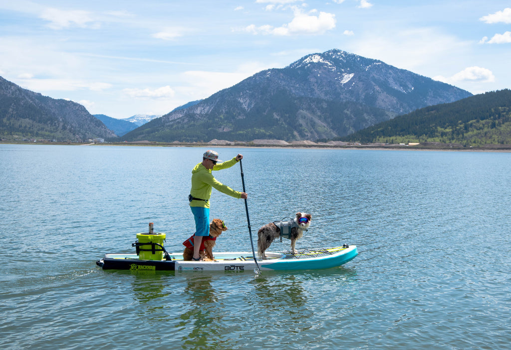 Man and Dogs SUP'ing