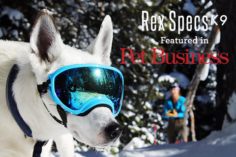 Rex Specs in Pet Business