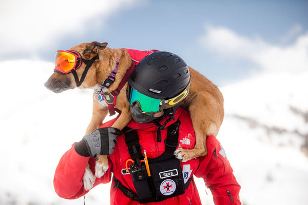 Ski Patroller at Squaw Valley holds Avalanche Dog in Training over his shoulders