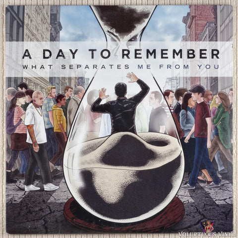 A Day To Remember ‎– What Separates Me From You (2010)