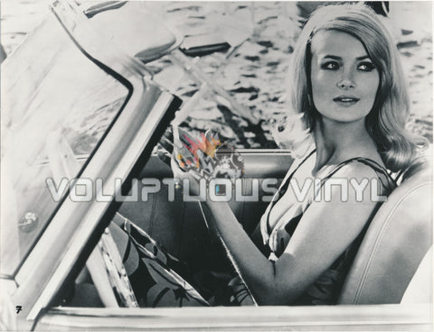 Barbara Bouchet - Agent For H.A.R.M. Convertible - Photograph