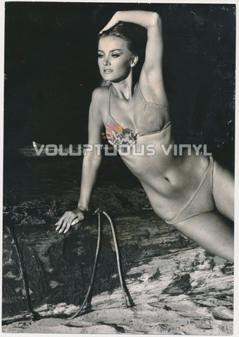 "Barbara Bouchet In Bikini ""Sculptured Bouchet"" Press Photo"