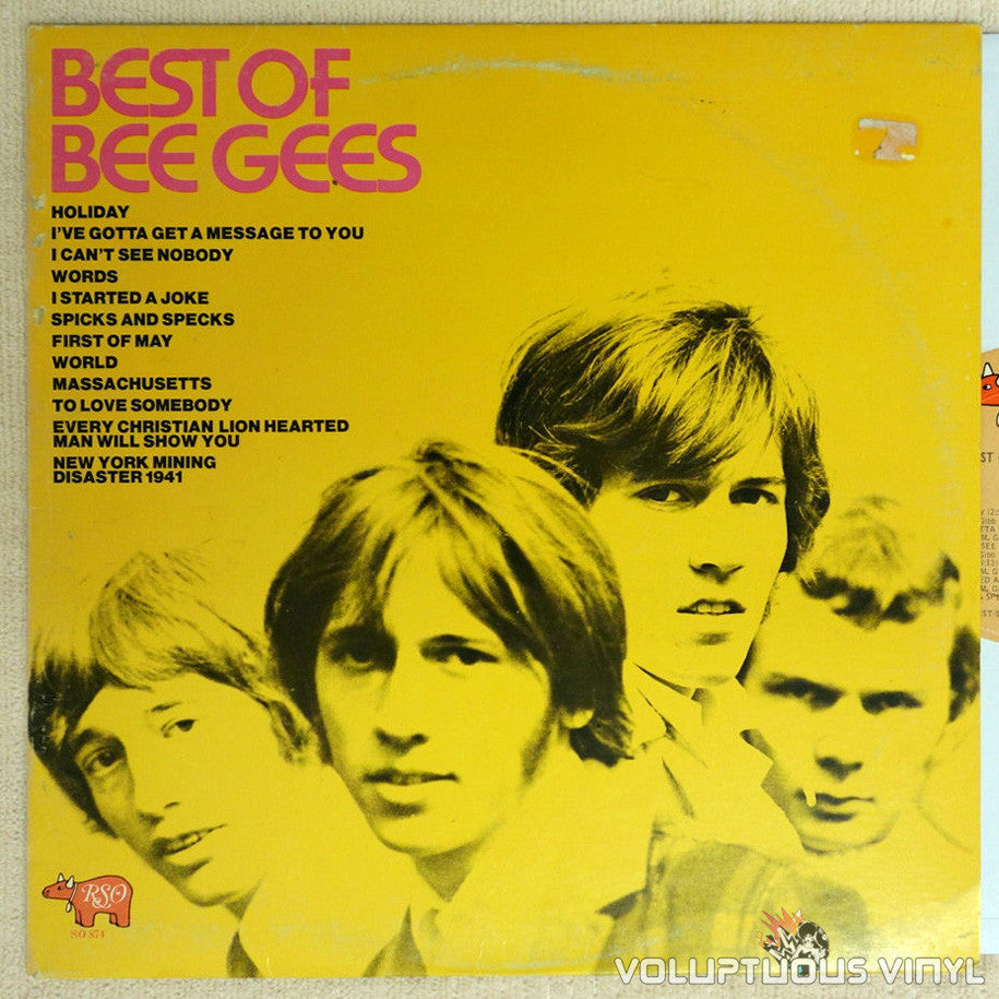 Bee Gees ‎– Best Of Bee Gees - Vinyl Record
