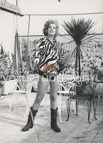Margaret Lee - 1960's Porch Glamour With Whip Photograph