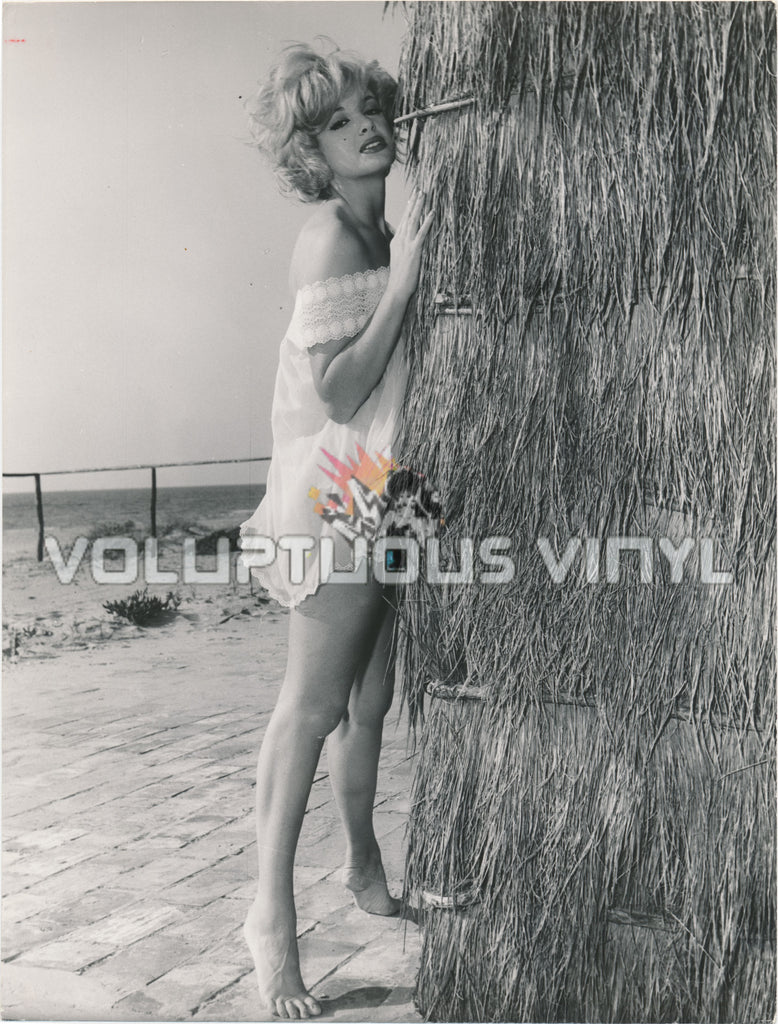 Margaret Lee - 1960's Leggy Beach Village Glamour Photograph