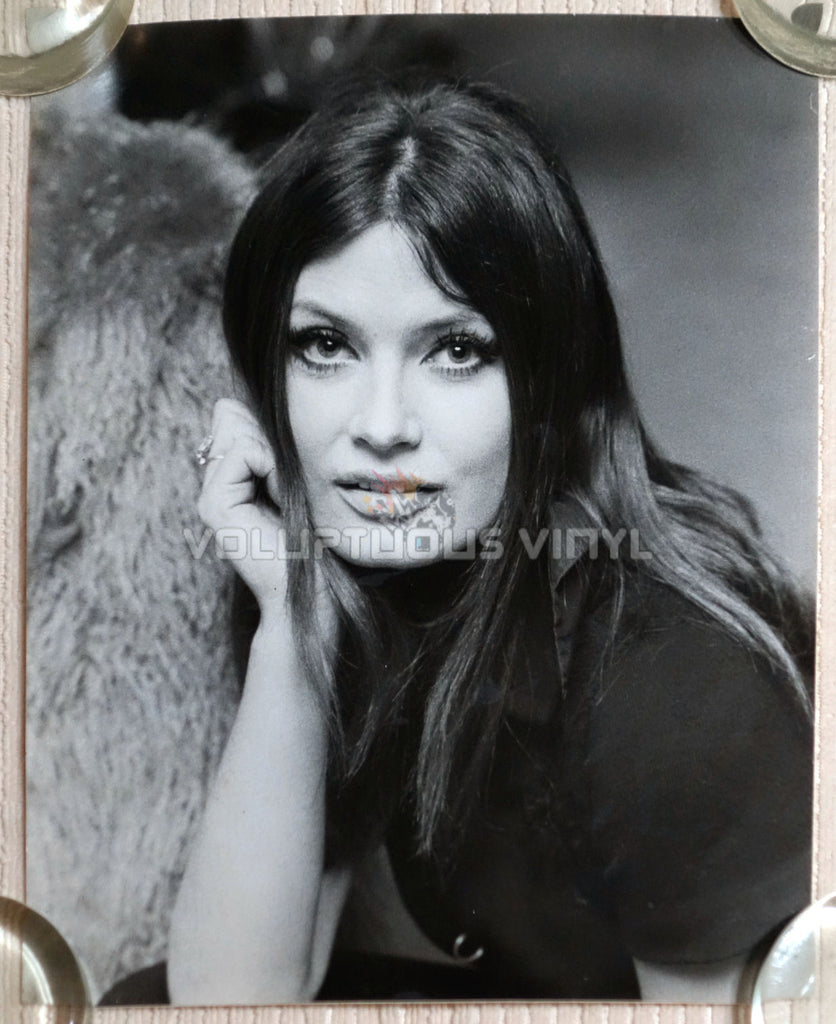 Marisa Mell Head Shot Photo 1