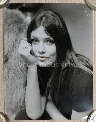 Marisa Mell Head Shot Photo 2