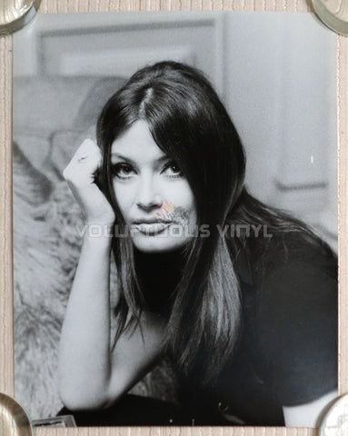Marisa Mell Head Shot Photo 3