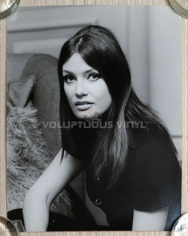 Marisa Mell Head Shot Photo 4