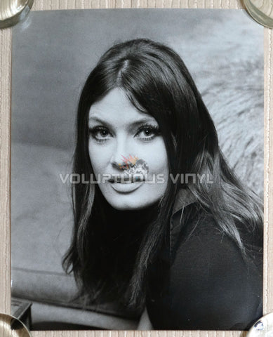 Marisa Mell Head Shot Photo 6