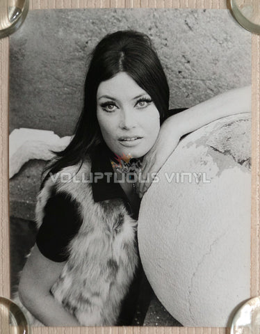 Marisa Mell Head Shot Photo 7