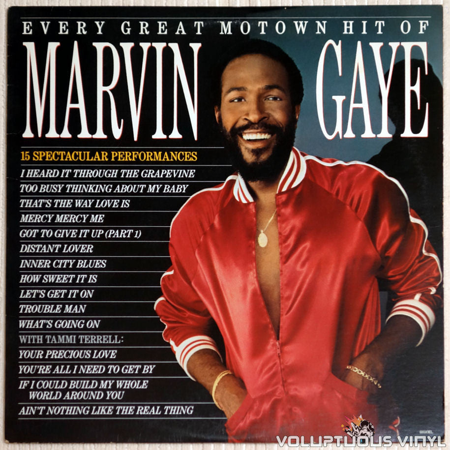 Marvin Gaye ‎– Every Great Motown Hit Of Marvin Gaye - Vinyl Record - Front Cover
