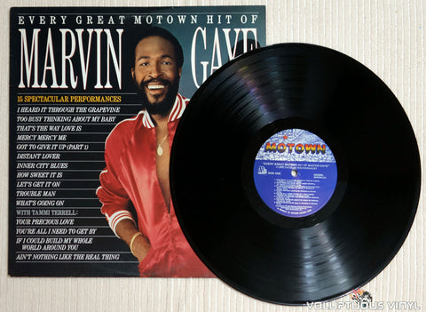 Marvin Gaye ‎– Every Great Motown Hit Of Marvin Gaye - Vinyl Record