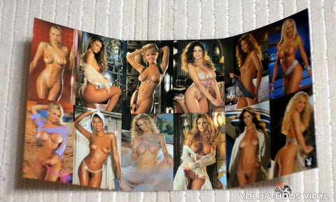 Playboy Video Playmate Calendar 2002 - Pocket Calendar
