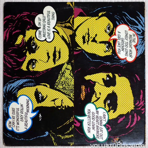 The Rascals ‎– Time Peace: The Rascals' Greatest Hits - Vinyl Record - Back Cover