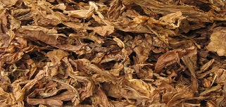Tobacco Processing
