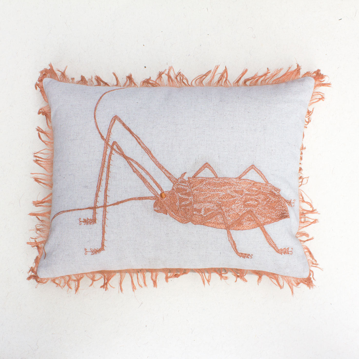 ORANGE BUG CUSHION COVER