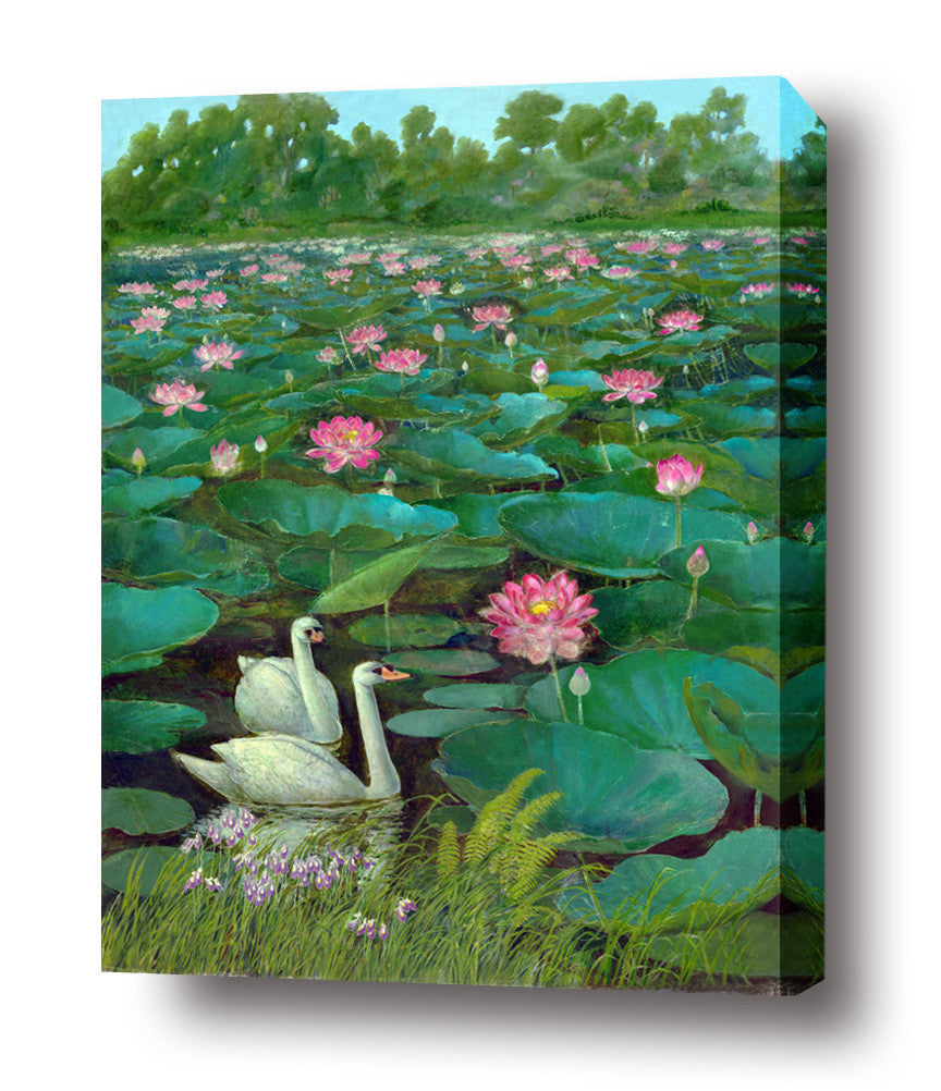 swans stretched canvas arts prints