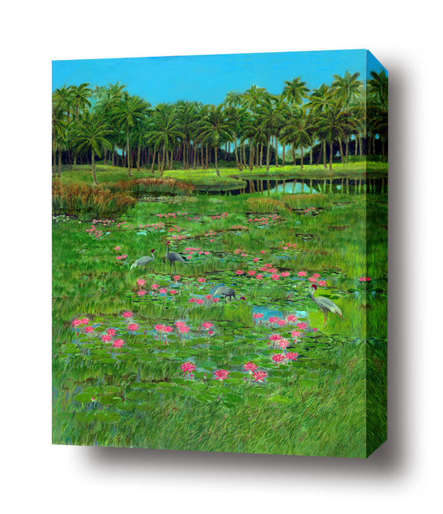 Pink Waterlilly stretched canvas arts prints