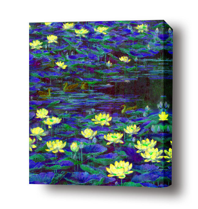 Waterlilly in blue pond stretched canvas arts prints