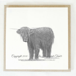 Highland cow 5 x gift cards