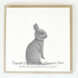 Rabbit 5 x gift cards