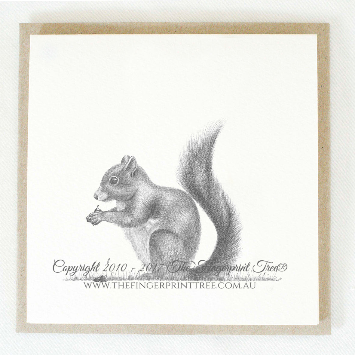 Squirrel 5 x gift cards