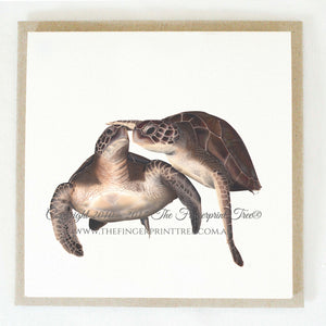 Turtles 5 x gift cards
