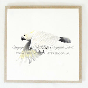 Cockatoo 5 x gift cards