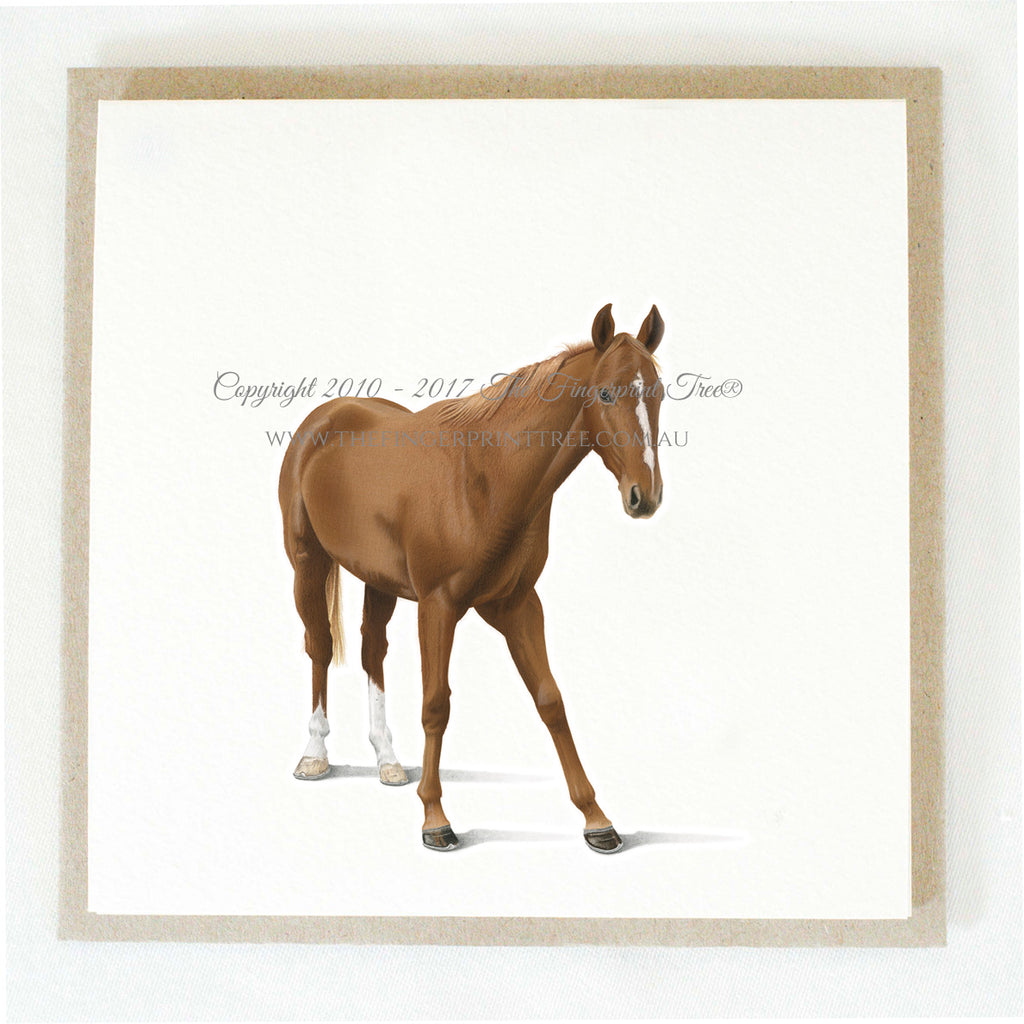 Horse (brown) 5 x gift cards