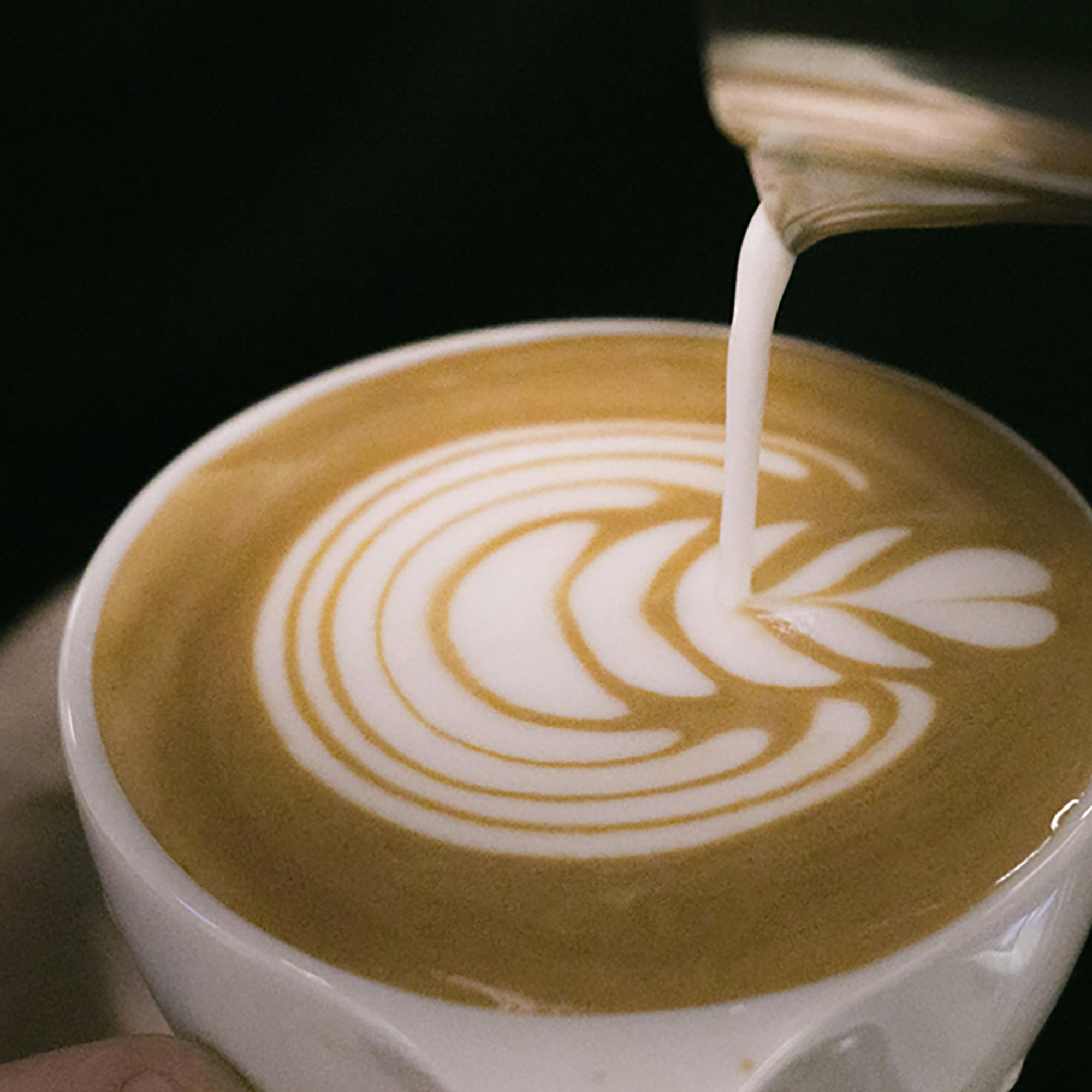 Intermediate Latte Art