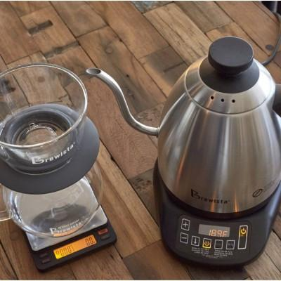 Brewista SmartPour Variable Temperature Gooseneck Kettle