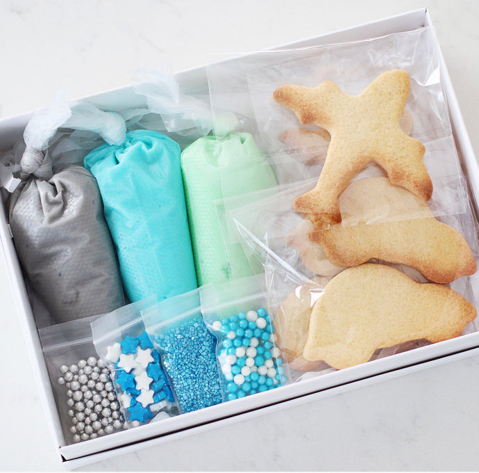 Cars & Planes DIY Cookie Kit - Bespoke Baby Co