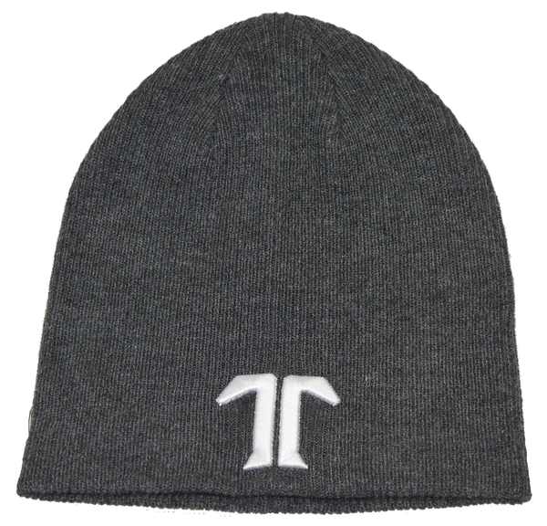 ICON BEANIE DARK GRAY F19
