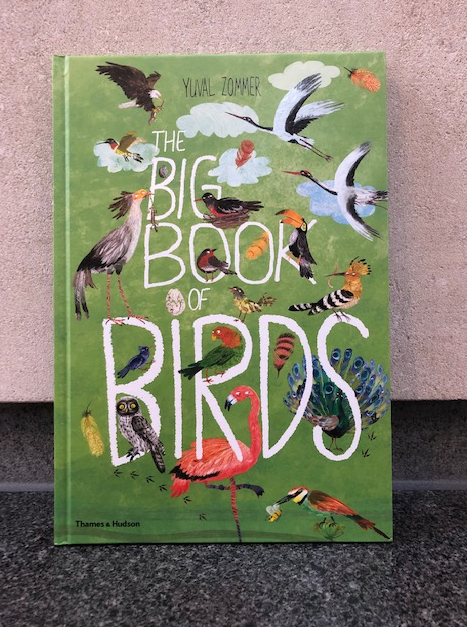 Yuval Zommer's The Big Book of (Birds, Beasts, Bugs and the Blue)
