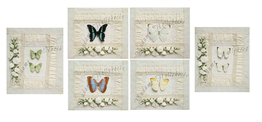 Butterfly Collection of Six Prints
