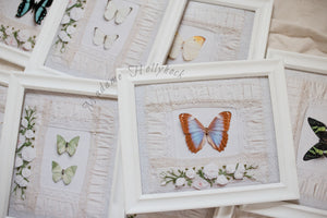 Butterfly and Monogram Art Print Set of 3
