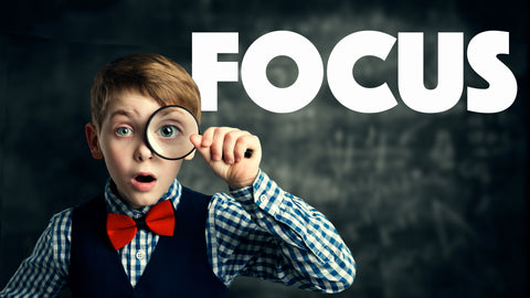 FOCUS (Brand New Series)