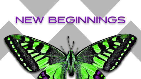 New Beginnings (DOWNLOAD)