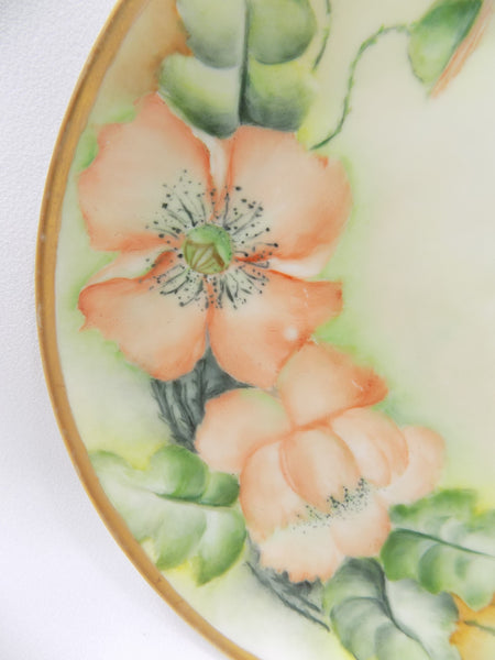 Hutschenreuther Porcelain Antique Bavarian Plate flowers close up