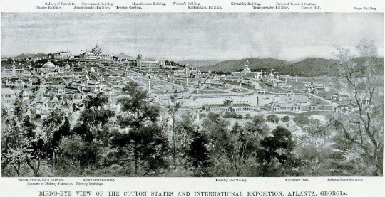 olld cotton state picture (6).png