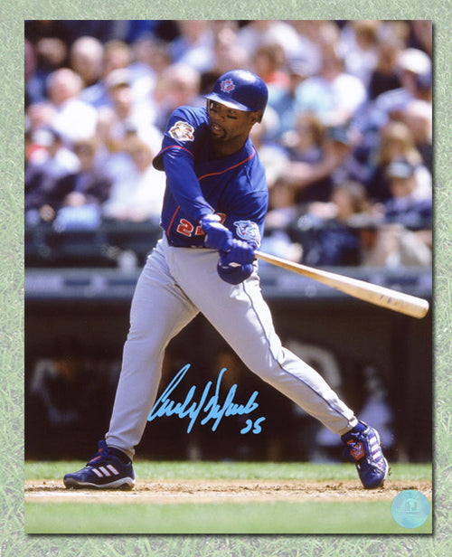 Carlos Delgado Toronto Blue Jays Autographed Batting 8x10 Photo